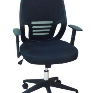 כסא דגם פזית